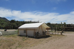 Glamping Tent Sleep 4 to 6 Photo 3