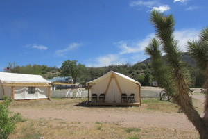 Glamping Tent Sleep 3 to 4 Picture 1
