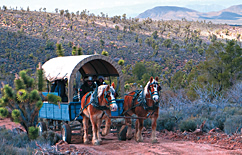 WA6 Cowboy Cabin & Horseback or Wagon Ride Package Photo 1