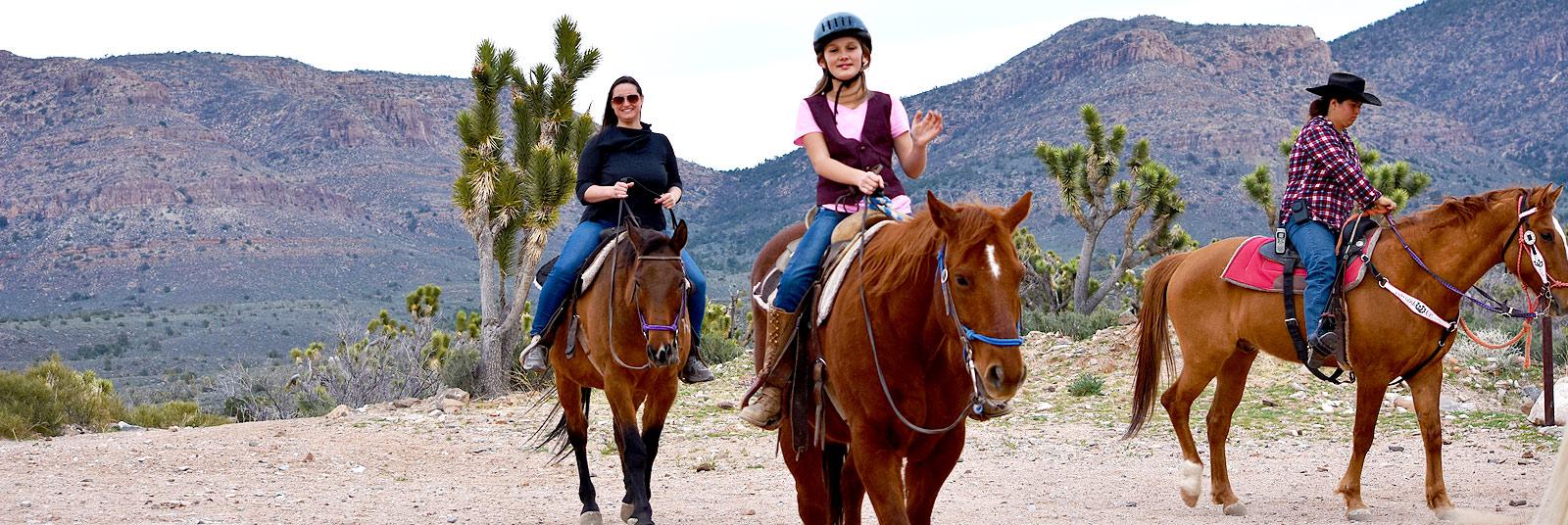 Geldings wallachebig valley ranch horses for sale